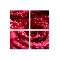 Tablou PT2944, 4 piese, compozitie cu flori, canvas, 80 x 80 cm