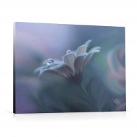 Tablou 03325, Floare, canvas, 60 x 75 cm