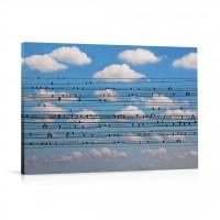 Tablou 03182, Concert pentru pasari, canvas, 60 x 90 cm