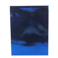 Punga cadou HBPG XL, din carton, albastra, 29 x 38 x 9 cm