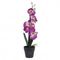 Floare artificiala, Koopman 317002680, orhidee, diverse culori, 38 cm