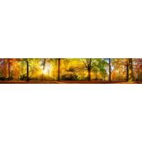Panou decorativ bucatarie Splashback, compozit, luminescent, SPB 001, 60 x 200 cm