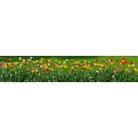 Panou decorativ bucatarie Splashback, compozit, luminescent, SPB 021, floral, 2890 x 590 x 3 mm