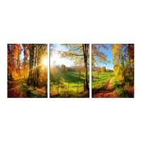 Tablou canvas TA19 - A5365, 3 piese, peisaj, panza, 90 x 40 cm