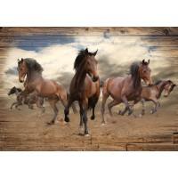 Fototapet duplex Horses P10083P8 368 x 254 cm