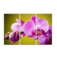 Tablou canvas TA12-PA0028, 3 piese, compozitie cu flori, panza, 90 x 60 cm