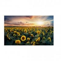 Tablou canvas TA19-A5217, peisaj, pe panza, 40 x 80 cm