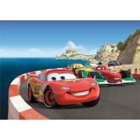 Fototapet duplex Disney Cars FTDS1924 255 x 180 cm