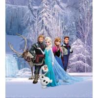 Fototapet duplex Disney Frozen FTDSS1953 156 x 112 cm