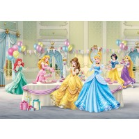 Fototapet duplex Disney Princess FTD224 360 x 254 cm