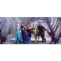 Fototapet Vlies Disney Frozen Team FTDNH5347 202 x 90 cm