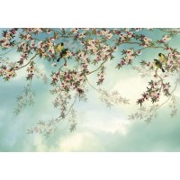 Fototapet hartie Sakura 8-213 368 x 254 cm