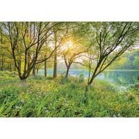 Fototapet hartie Spring Lake SD524 368 x 254 cm