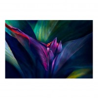 Tablou canvas Decor 04541, Tropical, panza + sasiu, 60 x 90 cm