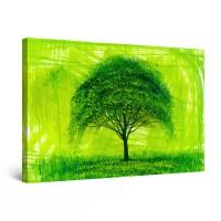 Tablou canvas dualview DTB8059, Startonight, Copac verde, panza + sasiu lemn, 60 x 90 cm
