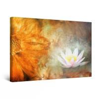 Tablou canvas dualview DTB8139, Startonight, Nufar, panza + sasiu lemn, 60 x 90 cm