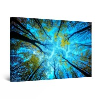Tablou canvas dualview DTB8611, Startonight, Deasupra copacilor, panza + sasiu lemn, 60 x 90 cm