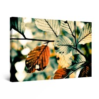Tablou canvas dualview DTB9015, Startonight, Frunze de fag, panza + sasiu lemn, 60 x 90 cm
