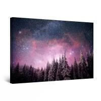 Tablou canvas dualview DTB9775, Startonight, Cer instelat peste padure, panza + sasiu lemn, 90 x 60 cm