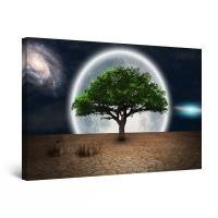 Tablou canvas dualview DTB10999, Startonight, Peisaj fantastic, panza + sasiu lemn, 90 x 60 cm