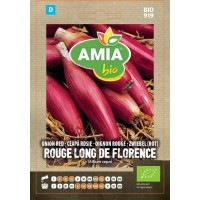 Seminte legume bio Amia, ceapa rosie Long de Florence