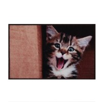 Covoras bucatarie Davo Pro 33022 Kitten naylon dreptunghiular 50 x 80 cm
