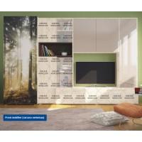Front pentru biblioteca living Zenit, crem lucios + maro + print P21, 1C