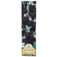 Arbust fructifer - mur Yurta