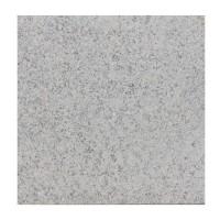 Granit G8602N interior / exterior 60 x 60 x 1.5 cm