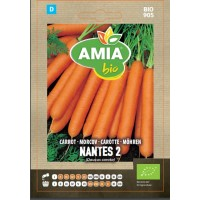 Seminte legume bio Amia, morcov Nantes 2