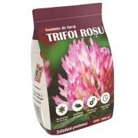 Seminte trifoi rosu 891, 0.5 kg