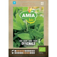 Seminte legume bio Amia, salvie Officinale
