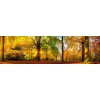 Panou decorativ bucatarie Splashback, compozit, luminescent, SPB 001, peisaj, 2600 x 600 x 3 mm