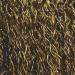 Perie sarma, cu maner lung, Lumytools LT06967, 285 mm