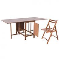 Seturi pliante masa + scaune