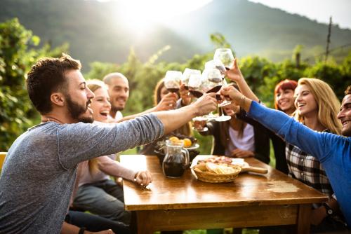 Tehnologia de obtinere a vinurilor in sistem casnic